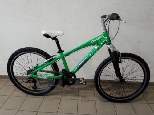 195 € Gaint, grün