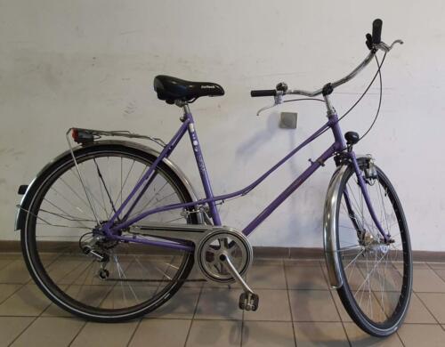 280€ Sigma, violett